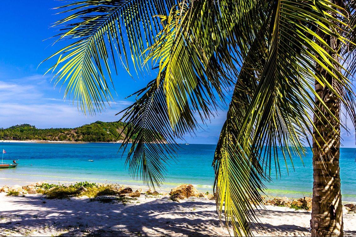 Thailand, Strand mit Palme