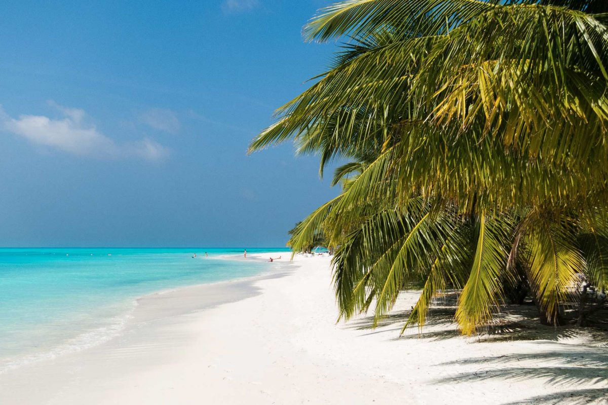 Palmenstrand © Meeru Island Resort & Spa